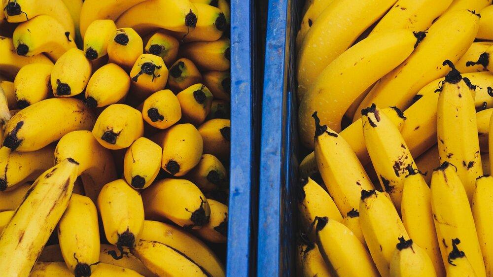 کاهش ۱۴ هزارتومانی قیمت موز در آستانه سال نو
