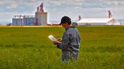 فاز نخست سیستم یکپارچه اطلاعات کشاورزی راه اندازی می شود