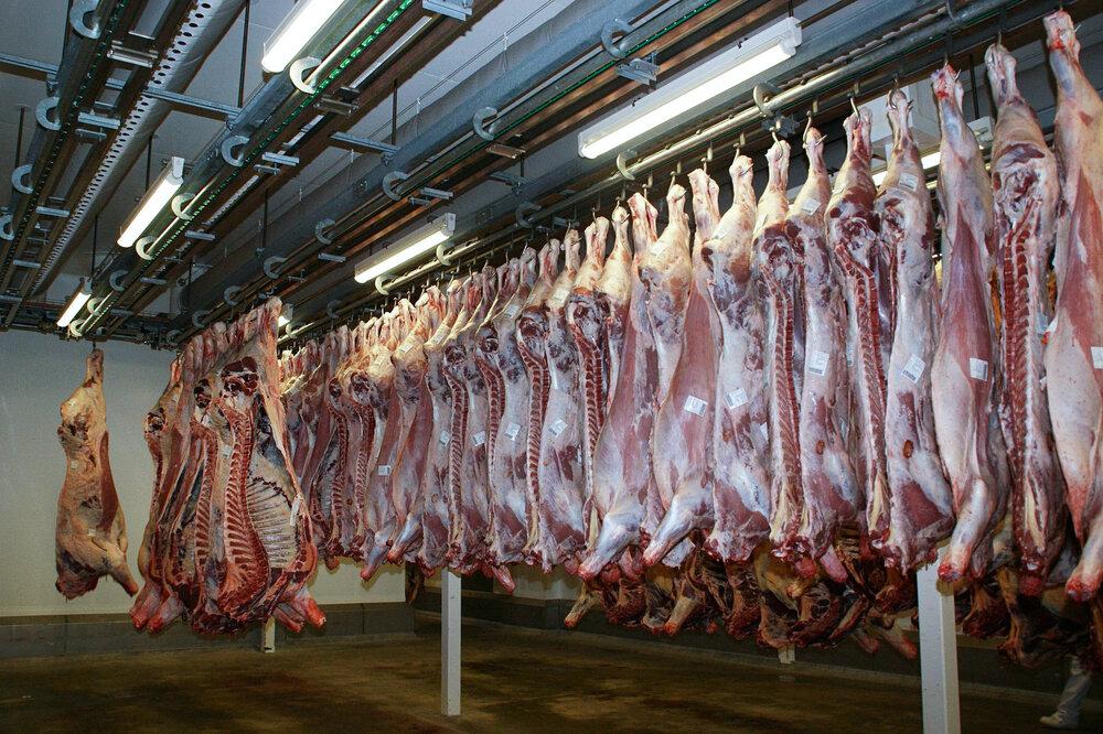 ستاد اجرایی فرمان امام (ره ) گوشت قرمز تنظیم بازاری توزیع می کند
