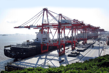 امکان مشاهده وضعیت ارز صادراتی در سامانه جامع تجارت فراهم شد