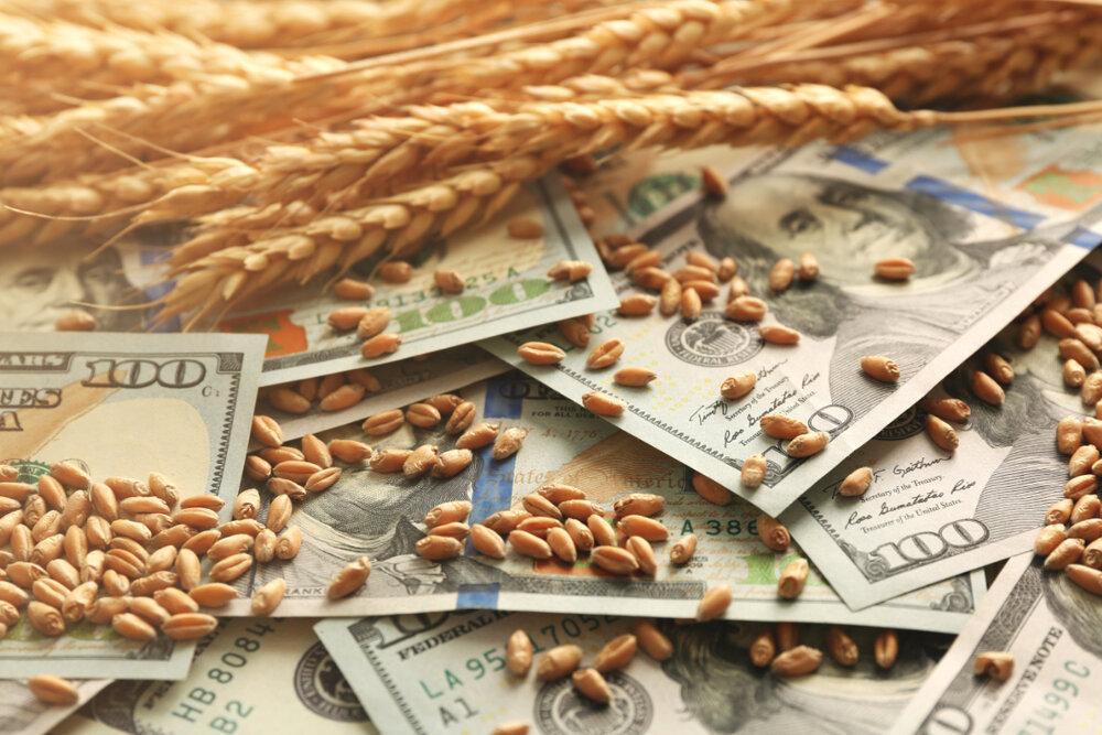 بانک مرکزی با تخصیص ارز به اتحادیه دامداران موافقت کرد