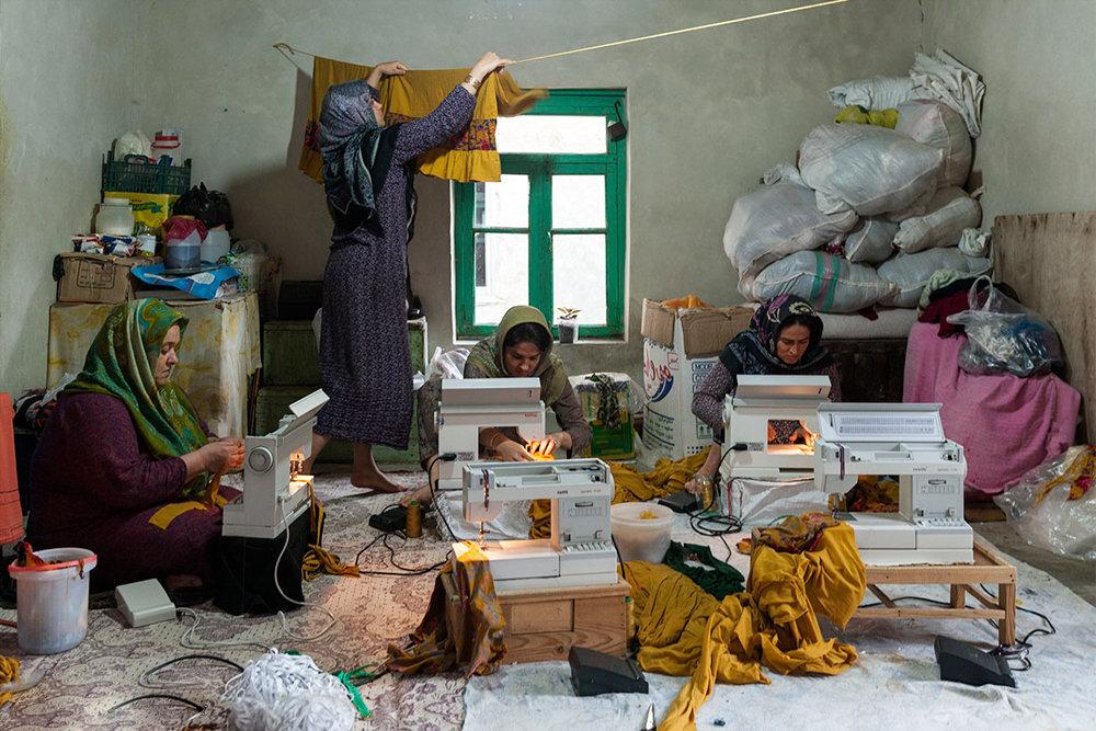 فعال تعاونی: قوانین زائد و نابرابری، مانع های جدی تولید است