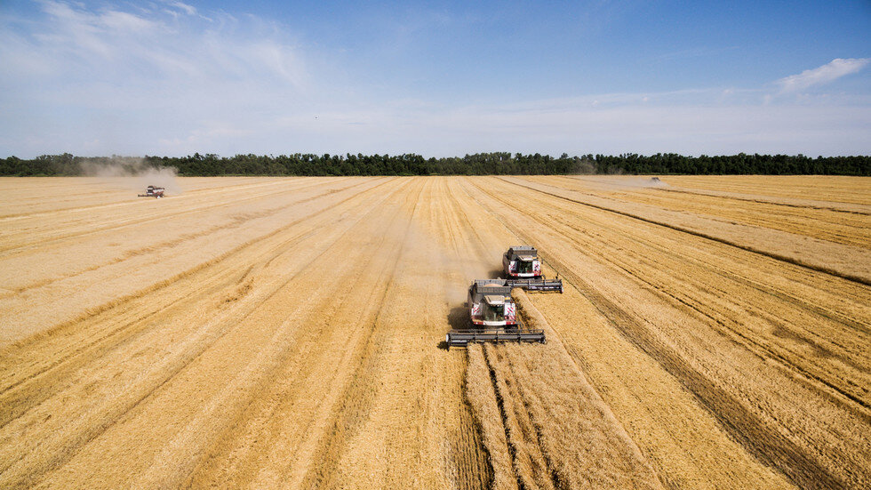 ۳۱۰ تعاونی تولیدی کشاورزی در چند استان کشور فعال شدند