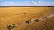 ۹۰ درصد کشاورزی دنیا دیمی است اما در ایران بر عکس !