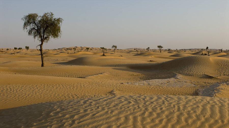 هشدارهای وزیر جهاد کشاورزی در مورد بیابان زایی