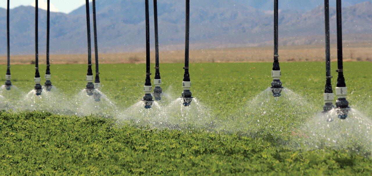 مجلس قانون افزایش آب بهای کشاورزی را بازنگری می کند