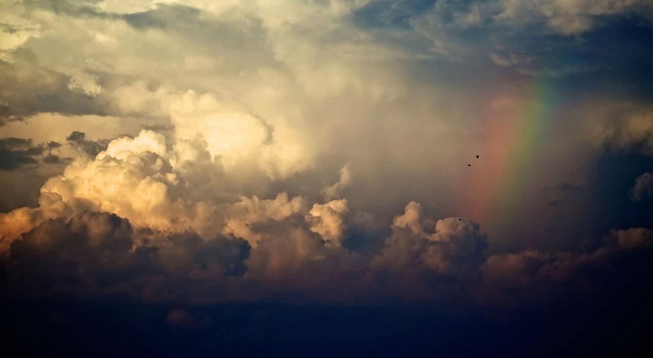 آغاز بارش پراکنده در شمال و جنوب کشور از امروز