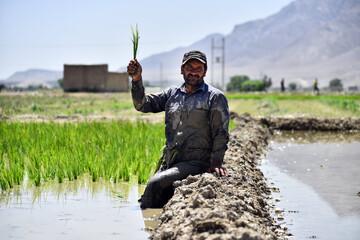 کشاورزان در بورس و رمزارز سرمایه گذاری می کنند