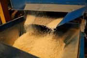 برنج داخلی خریدار ندارد